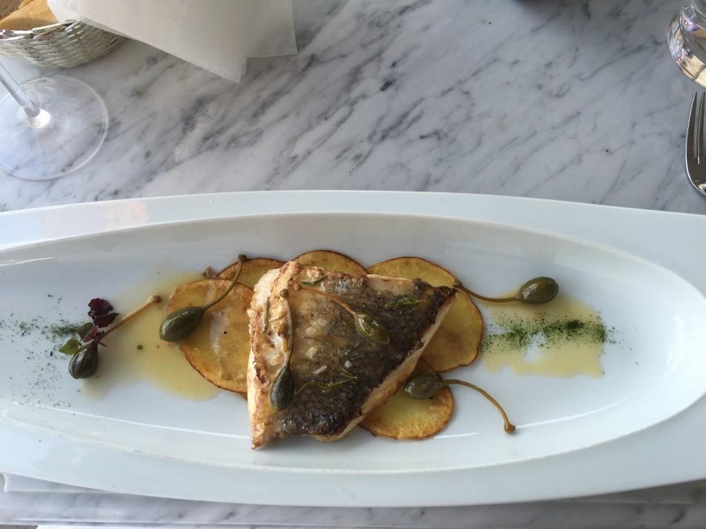 Istrian sea bass